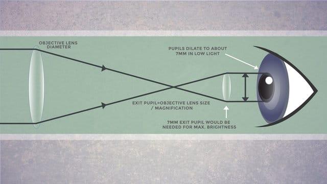 graphique expliquant la relation entre la pupille de sortie et la pupille oculaire